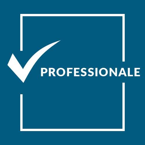 professionale
